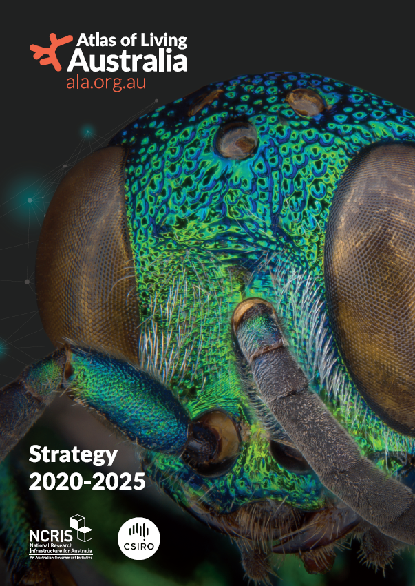 Image of the cover for the ALA Strategy 2020-2025