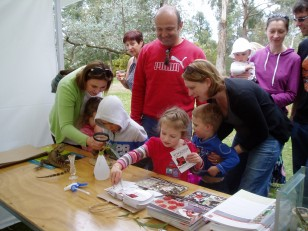ANBG Open Day 2010 - Families looking at the stick insects and the display