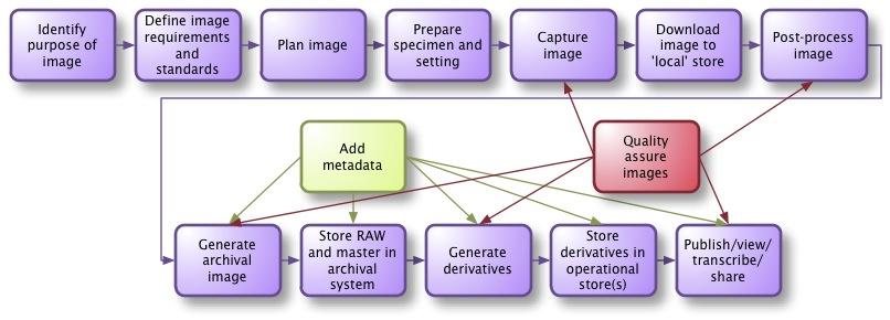 Generic specimen imaging process picture