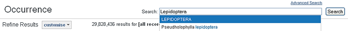 Search the occurrence records for Lepidoptera