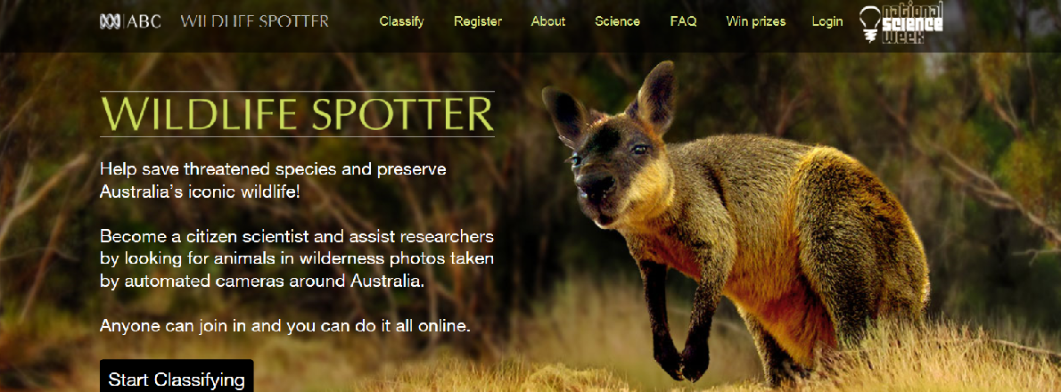 Image: Wildlife Spotter – ABC's citizen science project