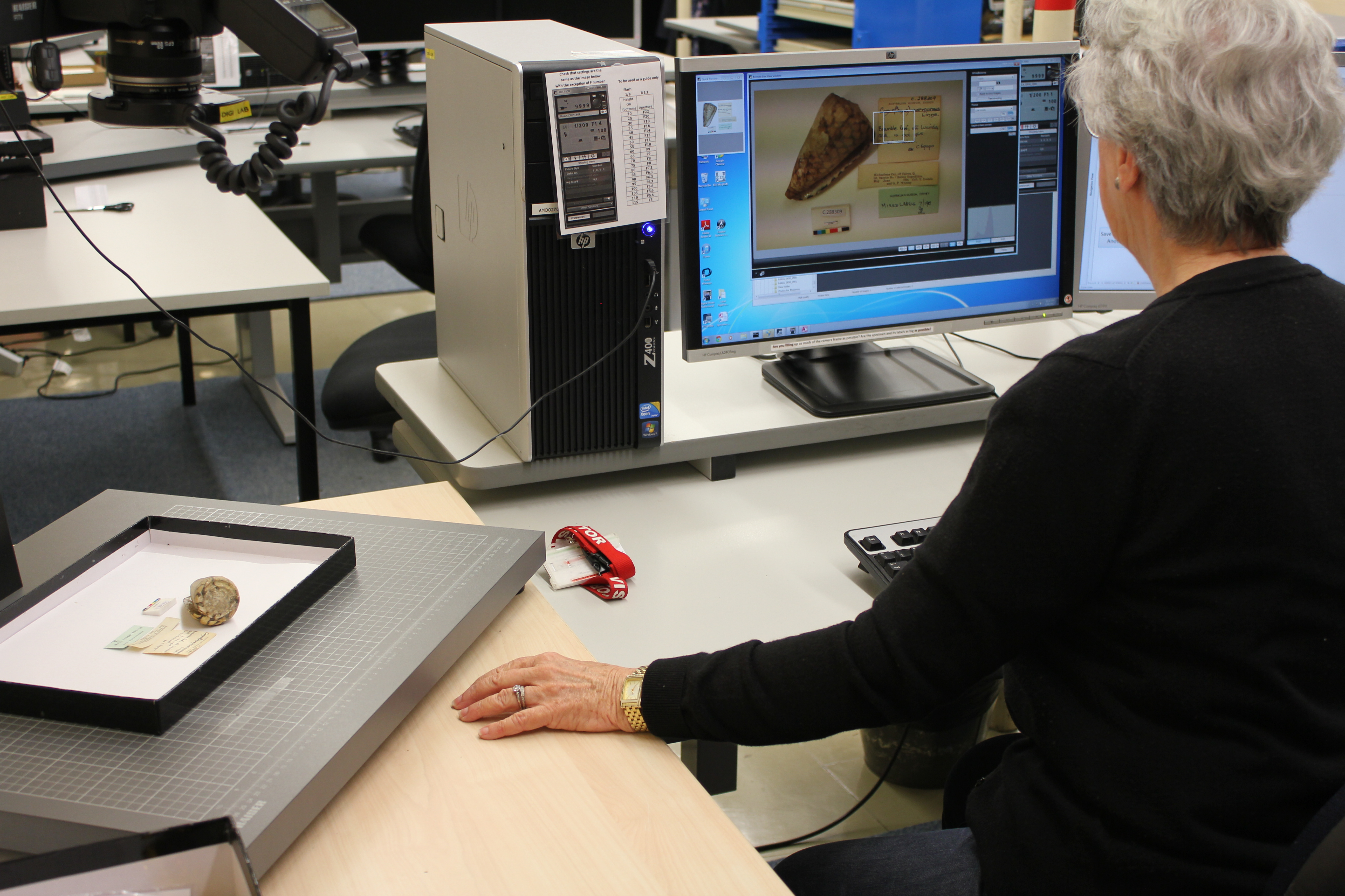 Image: Volunteers tackling digitisation of collections