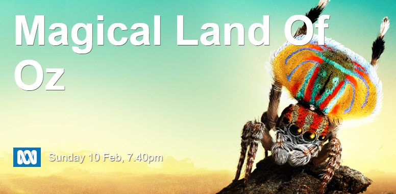 Image: Be part of the ABC's Magical Land of Oz