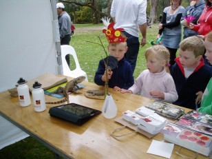 ANBG Open Day 2010 - Kids looking at the stick insect