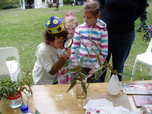 ANBG Open Day 2010 - Kids looking at Stick Insects