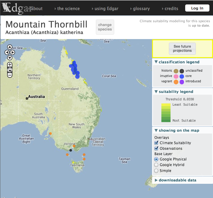 Mountain thornbill records as display in the JCU edgar portal