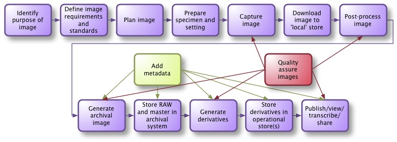 Generic specimen imaging process picture