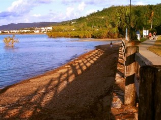 Beach and esplanade of Cannonvale Beach, Queensland