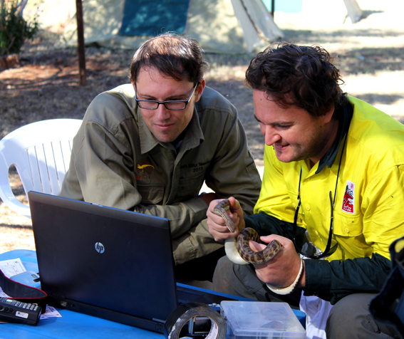 Brad Wilken (TeachLive participant) and Dane Trembath (Senior Zoological Consultant, EcOz Environmental Services) Skype Brad's students in Canberra from Henbury Station, Northern Territory, photo Jo Harding © Copyright, Department of the Environment.