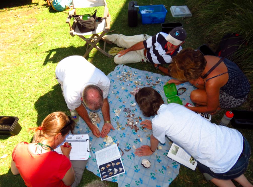 Scientists and volunteers working together to gather data and learn more about the ecosystem. Photo: courtesy of Atlas of Live in the Coastal Wilderness