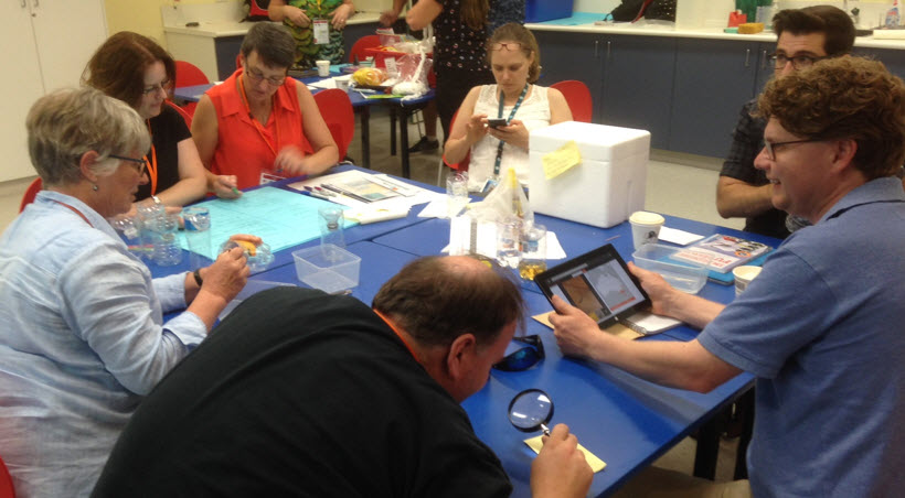 Teachers from the STEM X Academy use the ALA to identify what they caught in their traps